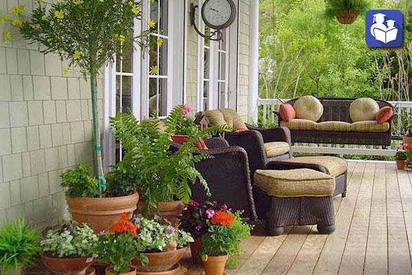 با مشاوره و آموزش آنلاین از گل و گیاه خود بهتر نگهداری کنیم